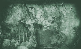 Zielony grunge textured ściana Obrazy Royalty Free