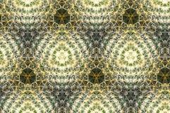 Zielony i biały kaktusowy abstrakta wzór Zdjęcie Stock