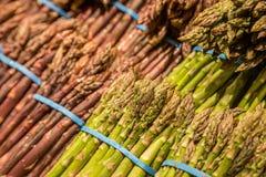 Zielony i Purpurowy asparagus zdjęcia stock