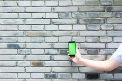 Zielony i pusty ekran mądrze telefon Obraz Royalty Free