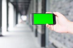 Zielony i pusty ekran mądrze telefon Zdjęcie Royalty Free