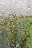 Zielony i Różowy widok Przez deszczu Splattered Szklanego okno obrazy royalty free