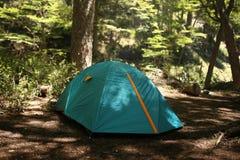 Zielony iglu namiot w lesie w górze w Patagonia, Argentyna obrazy royalty free
