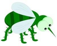 Zielony insekt z dużymi oczami Zdjęcia Royalty Free