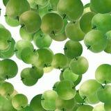 Zielony jabłka tło Obraz Royalty Free
