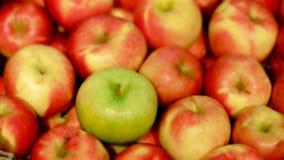 Zielony jabłko wśród czerwonych jabłek zdjęcie wideo