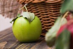 Zielony jabłczany pobliski kosz Fotografia Royalty Free