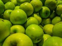 Zielony jabłczany spadek obraz royalty free