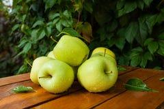 Zielony jabłko w wiosce Obraz Stock