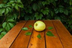 Zielony jabłko w wiosce Fotografia Royalty Free