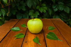 Zielony jabłko w wiosce Zdjęcia Royalty Free