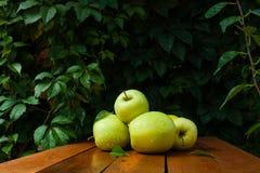 Zielony jabłko w wiosce Zdjęcie Royalty Free