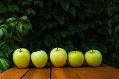 Zielony jabłko w wiosce Zdjęcie Stock