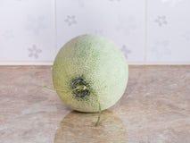 Zielony japoński melon na kontuarze w kuchni Fotografia Royalty Free