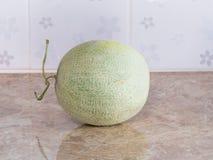 Zielony japoński melon na kontuarze w kuchni Zdjęcie Royalty Free