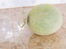 Zielony japoński melon na kontuarze w kuchni Fotografia Stock