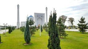 zielony jedlinowy drzewo w tła Meczetowy nieletni w Uzbekistan Tashkent w chmurnej pogodzie Zdjęcie Royalty Free