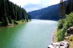 zielony jezioro Obraz Royalty Free