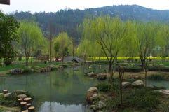 Zielony jezioro podczas wczesnej wiosny w Chiny Zdjęcie Stock