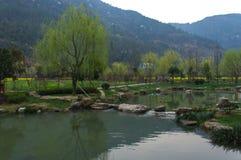 Zielony jezioro podczas wczesnej wiosny w Chiny Fotografia Stock