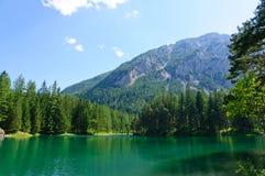Zielony jezioro w Bruck dera Mur, Austria (Grüner widzii) Obrazy Royalty Free
