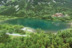Zielony jezioro w Wysokich Tatras górach Fotografia Royalty Free