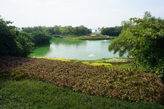 Zielony jezioro z ogródem fotografia royalty free