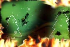 Zielony jodła ogień płonie płonącego tło Obraz Stock