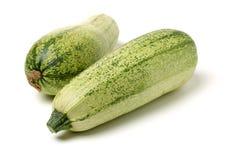 Zielony kabaczka zucchini Obrazy Stock