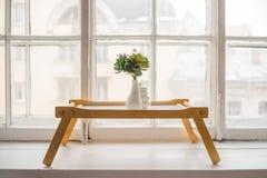 Zielony kaktus, sukulenty na windowsill na drewnianym stole z lekkim miękkim tłem wiosna, lata kartka z pozdrowieniami dom Fotografia Royalty Free