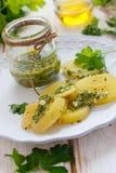 zielony kartoflany salsa Fotografia Royalty Free