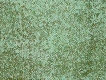 Zielony kolor czuł teksturę Abstrakcjonistyczny tło i tekstury obraz royalty free