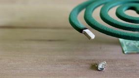 Zielony komara repellent palenie i bielu dym na drewnianym stole z zieloną plamą zaświecamy zbiory wideo