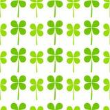 Zielony koniczyna liści wzór ilustracja wektor