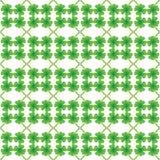 Zielony koniczynowy liścia wzór Fotografia Royalty Free