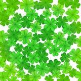 Zielony koniczynowy ` s opuszcza tło tła dzień Patrick s st Obraz Royalty Free
