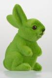 Zielony królik Zdjęcia Stock
