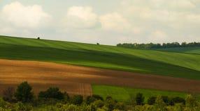 zielony krajobraz fotografia stock