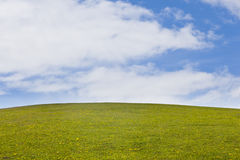 zielony krajobraz Obraz Stock