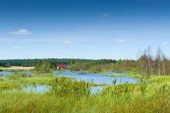 Zielony krajobraz zdjęcia royalty free