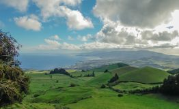 Zielony krajobraz Azores obrazy royalty free