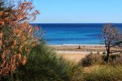 Zielony krajobraz w południowym Hiszpania na plaży zdjęcia royalty free