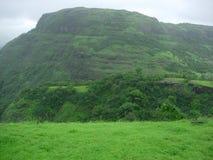 zielony krajobraz wsi Zdjęcia Stock