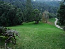 Zielony krajobraz z drogą Fotografia Royalty Free
