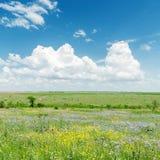 Zielony krajobraz z kwiatami i chmurami obrazy royalty free