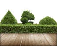 Zielony krzak z ściennym i posadzkowym drewnem zdjęcia stock
