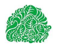 zielony krzaka biel Zdjęcie Royalty Free