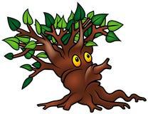 zielony krzew Zdjęcie Stock