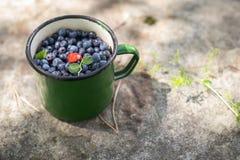 Zielony kubek z czarnymi jagodami i truskawkami Obrazy Stock