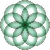Zielony kwiatu projekta loga tło Zdjęcie Stock